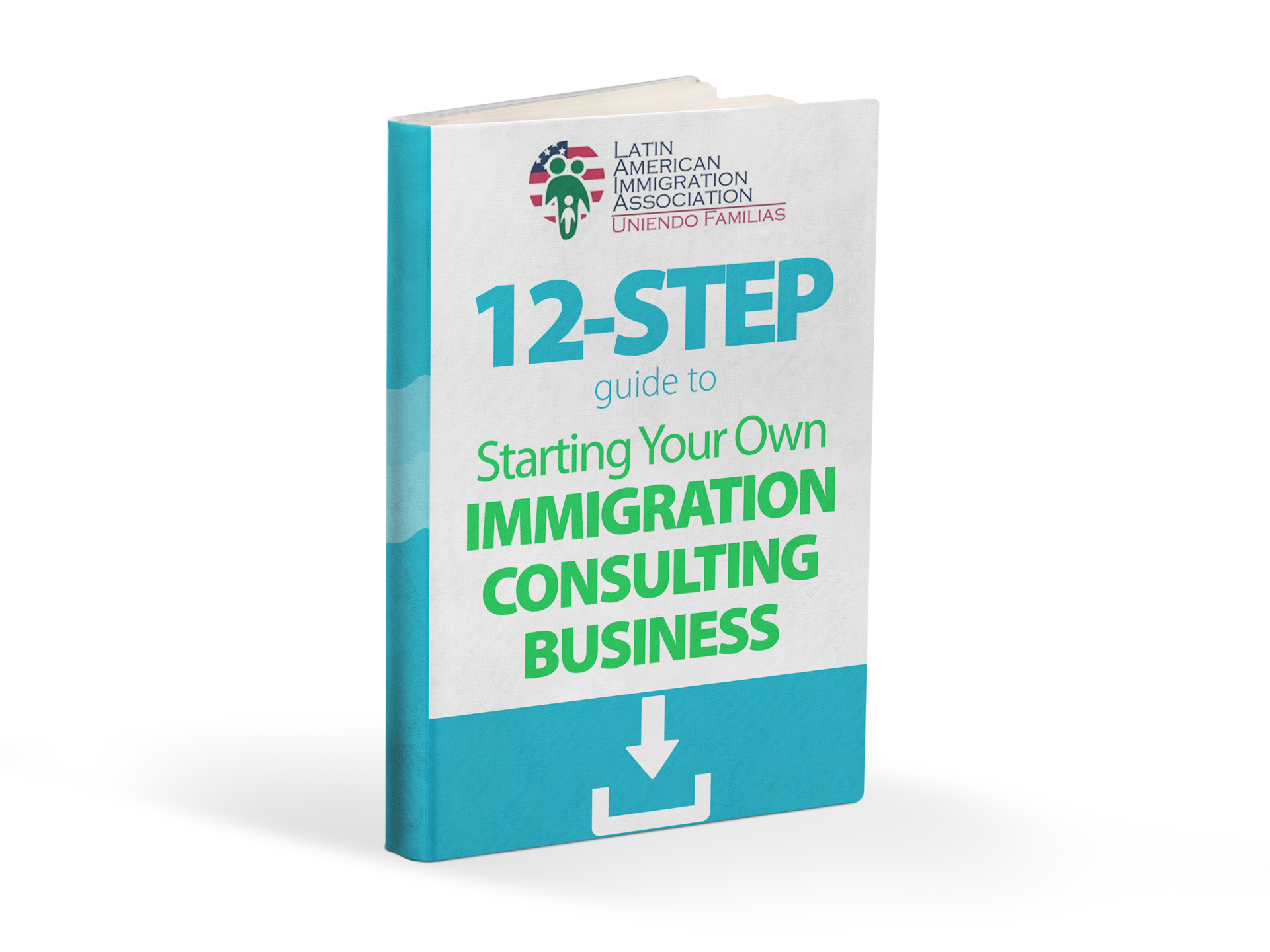 guide to becoming an immigration consultant